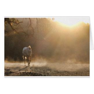 Pferd in der hellen pferdeartigen Beileids-Karte Grußkarte