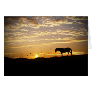 Pferd in der Sonnenuntergang-Beileidskarte Karte