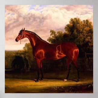 Pferd in einer Landschaft Posterdruck