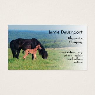 Pferd und Fohlen auf einer Wiese Visitenkarte