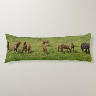 Pferde in der Weide Seitenschläferkissen
