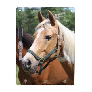 Pferde Memoboard