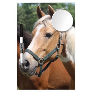 Pferde Memoboards