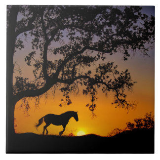 Pferde-und Eichen-Kunst-Fliese Keramikfliese