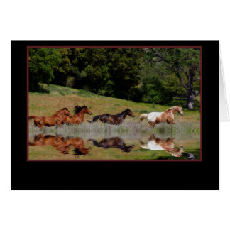 PferdeBeileids-Karte, mit tiefsten Grußkarte