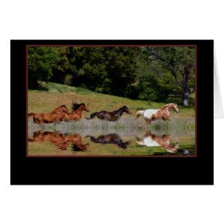 PferdeBeileids-Karte, mit tiefsten Karte