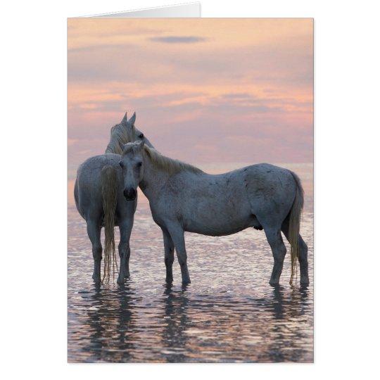 Pferdegruß-Karte - zwei weiße Pferdefreunde Karte