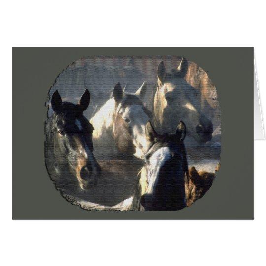 Pferdeherde Grußkarte
