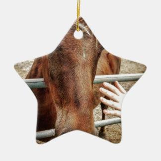 Pferdeleben Keramik Ornament
