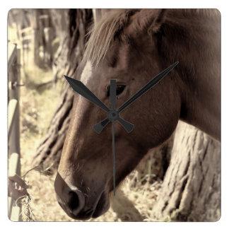 Pferdenahes hohes quadratische wanduhr