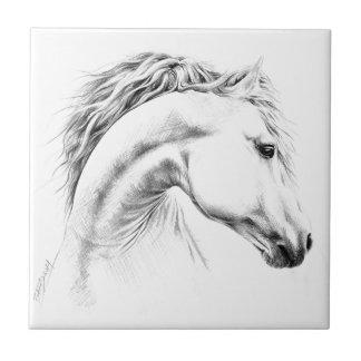Pferdeporträtbleistift, der Fotofliese zeichnet Keramikfliese