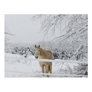 Pferdepostkarten-Winterlandschaft Postkarte
