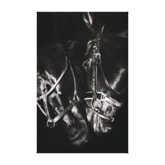 Pferdesammlung. Schwarzes u. Weiß Leinwanddruck
