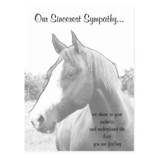 Pferdetierarzt-Beileid Postkarte
