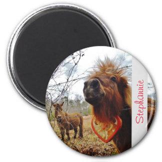 PferdValentinsgruß-Herzrosa Runder Magnet 5,7 Cm