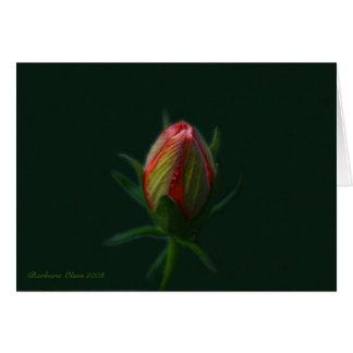 Pfirsich-Hibiskus Blume-ein Soul, das in der Natur Karte