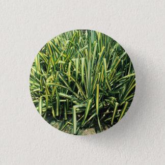 Pflanzen-Knopf-Grün-Schrauben-Kiefer Runder Button 3,2 Cm