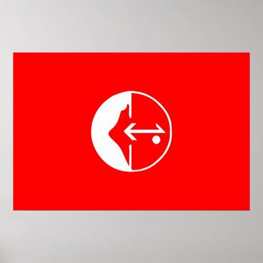 Pflp, politische Flagge Kolumbiens Plakat