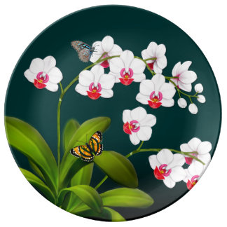 Phalaenopsis-Orchideen-u. Teller Aus Porzellan