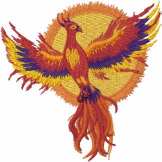 Phoenix-Steigen