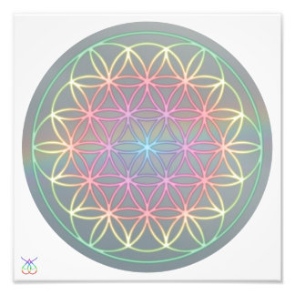 Photo affiche Healing Energy «Flower Of LIFE