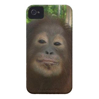 Photo d'orang-outan de Krista Coque Case-Mate iPhone 4