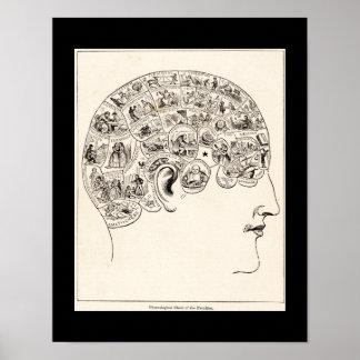 Phrenologisches Diagramm der Lehrkörper, Vintage Poster
