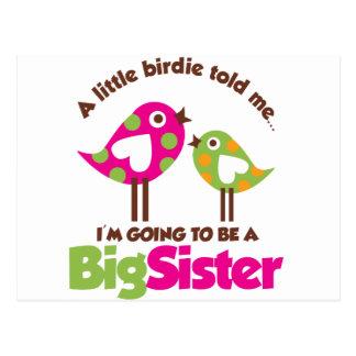 Piepmatz, der geht, eine große Schwester zu sein Postkarte
