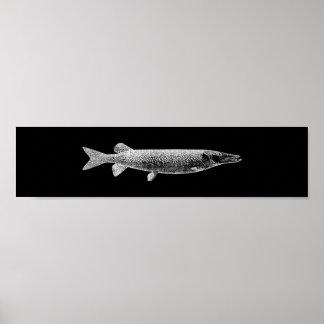 Pike-Jack-Fisch-metallischer silbernes Poster