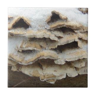 Pilze im Winter Kleine Quadratische Fliese