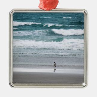 Pinguin, der vom Ozean zurückgeht Quadratisches Silberfarbenes Ornament
