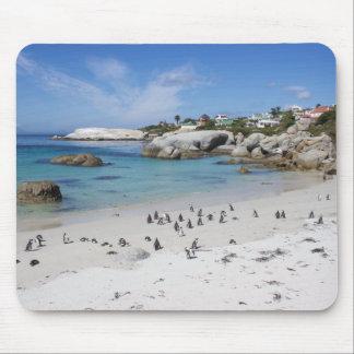 Pinguin-Kolonie auf Flussstein-Strand, Südafrika Mousepads