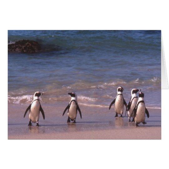 Pinguine auf der Strand Karte