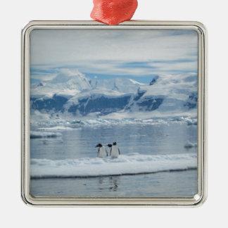 Pinguine auf einem Eisberg Silbernes Ornament