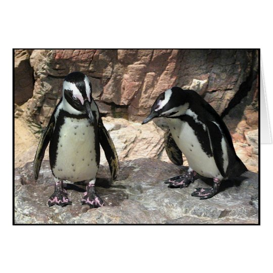 Pinguine Grußkarte