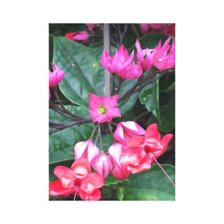 "PinkF12"" X12"", 1,5"", Single-Leinwand Leinwanddruck"