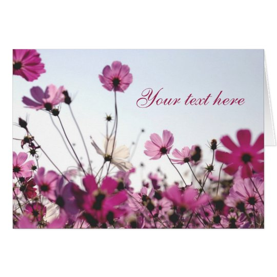 Pinkfarbene Kamillen-Anmerkungs-Karte Mitteilungskarte