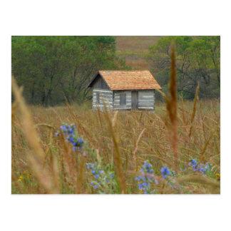 Pioniere parken Natur MittelLincoln, Ne 2NW Postkarte