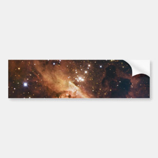 Pismis 24 die braune Sterne NASA Autoaufkleber