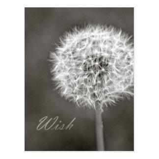 Pissenlit inspiré de souhait carte postale