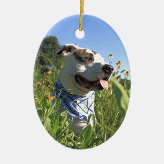 Pitbull-Knochen-Frühling Ovales Keramik Ornament