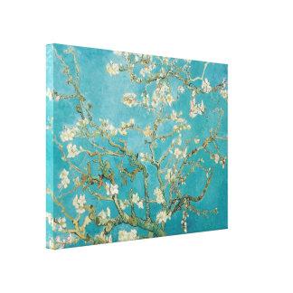 PixDezines Van Gogh Mandelblüten Leinwanddruck