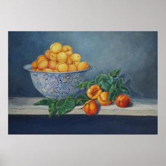 Plakat der Aprikosen und der Pfirsiche