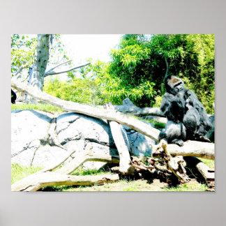 Plakat mit dem Gorillatier bunt
