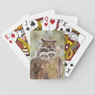 Plattform der Spielkarten mit Eulen