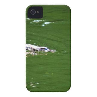PLATYPUS EUNGELLA NATIONALPARK AUSTRALIEN iPhone 4 Case-Mate HÜLLE