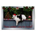 Plätzchen-liebevolle Katze Grußkarten