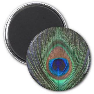 Plume de paon sur le gris magnet rond 8 cm