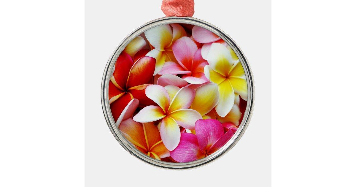 Plumeriafrangipani-Hawaii-Blume besonders Silbernes Ornament | Zazzle.ch