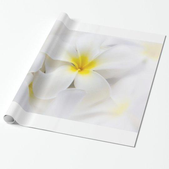 Plumeriafrangipani-Hawaii-Blumen-Blumen-Schablone Geschenkpapier ...